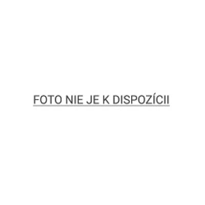 4smarts odolný zadní kryt IBIZA pro Samsung Galaxy Note 10 (N970), čirá