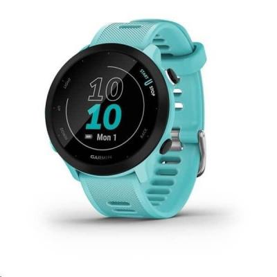 Garmin GPS sportovní hodinky Forerunner 55 Blue