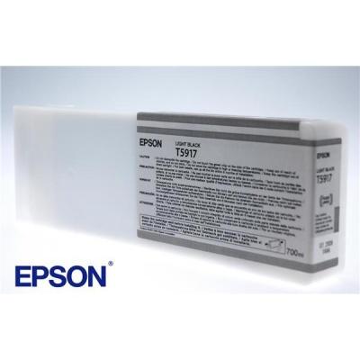 EPSON ink čer Stylus Pro 11880 - light (700ml)